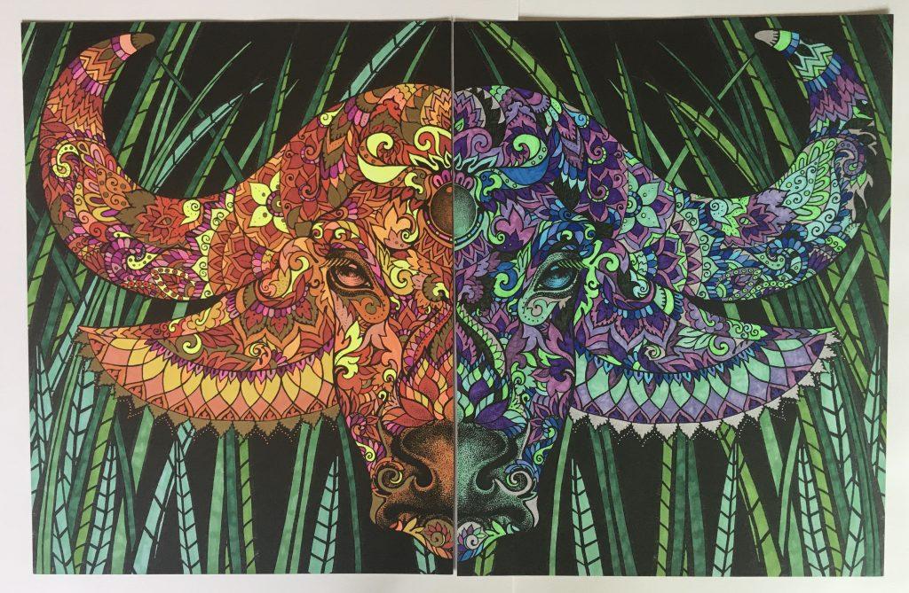 chris-freyer-coloring-24-buffalo diptych
